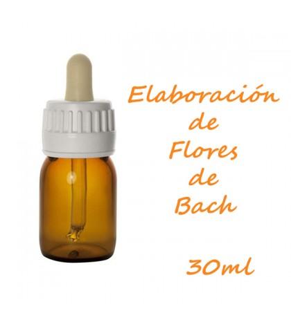 Flores de Bach 30ml