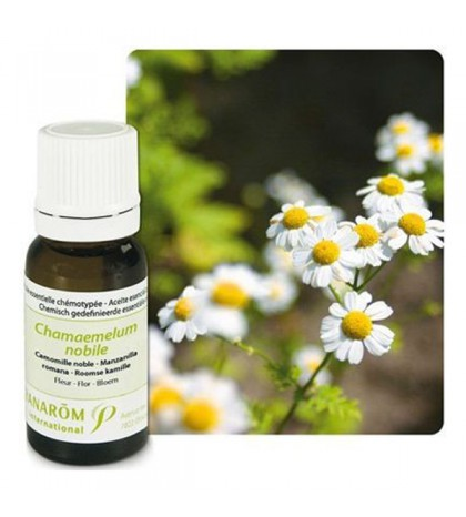 Pranarom Aceite Esencial Manzanilla Romana 10ml