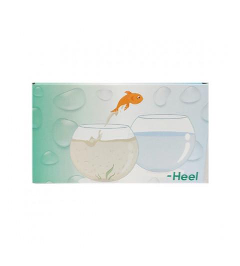 Heel Terapia detoxificación