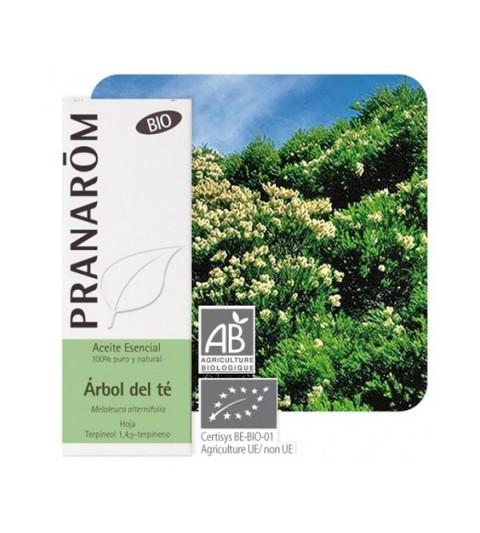 Pranarom Aceite esencial árbol de té 10ml
