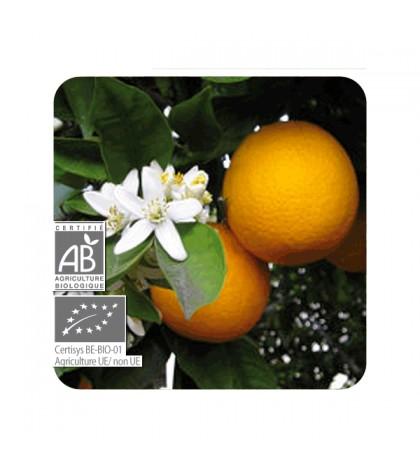 Pranarom aceite esencial Naranja Dulce 10ml