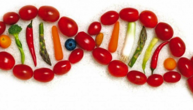 TEST NUTRIGENÉTICO – ¿Nutrición Personalizada?
